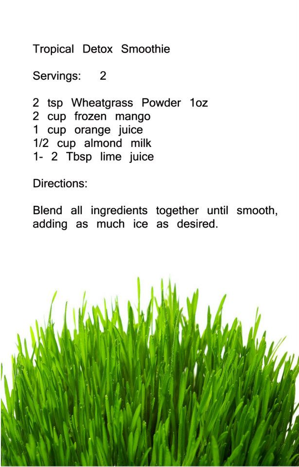 Recepies Wheatgrass 15